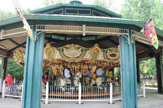 Image result for dan nicholas park