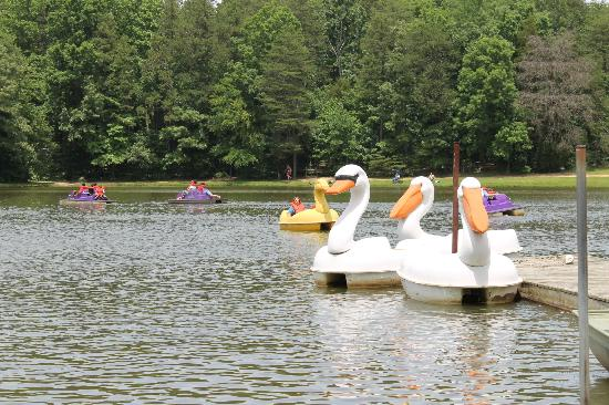 Salisbury, Kuzey Carolina: Fun paddle boats on the lake