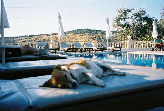 The Hotel Patara Viewpoint: swimming pool