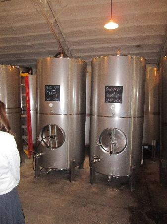 Galena Cellars Winery & Vineyard: Winery tour