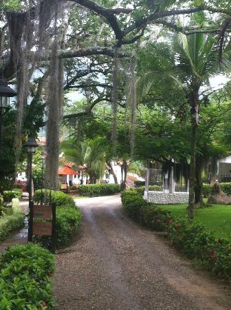 Meson del Cuchicute: Driveway into hotel