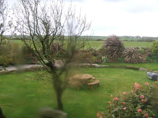 Trelew Farm : View from our bedroom