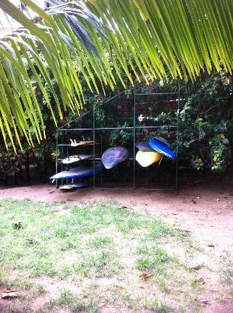 Hotel Las Tortugas: Surfs up!