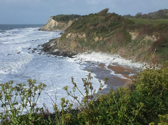 Lisle Combe: A short walk to the beach