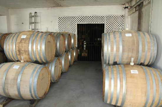 Esk Valley Winery (4)