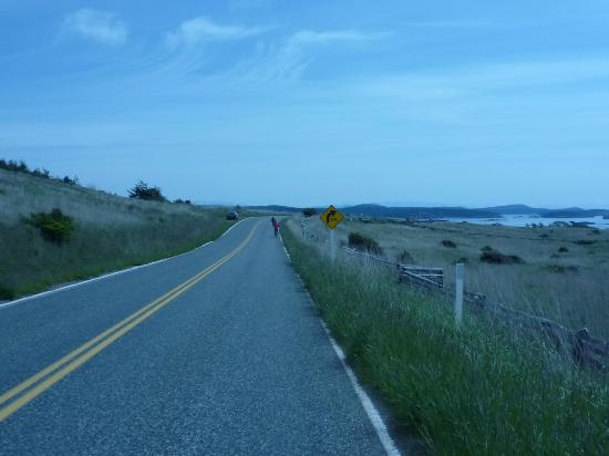 Crystal Seas Kayaking - Day Tours: Road way for most of the biking