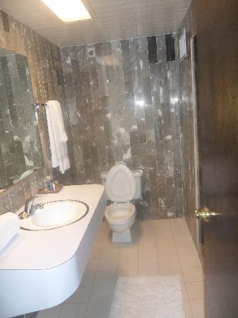 Fray Marcos De Niza: baño