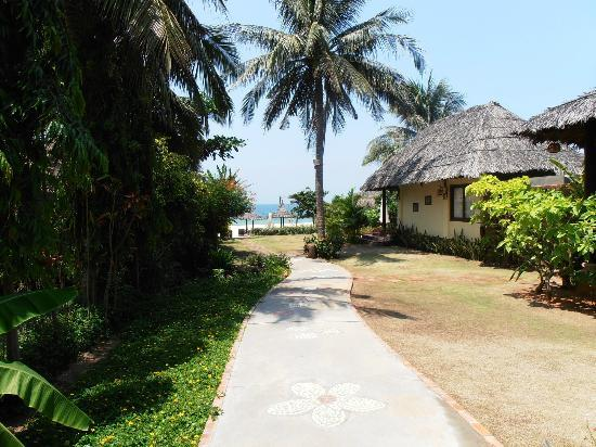 Bao Quynh Bungalow: Beach Front Bungalow, wonderful !