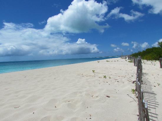 Low Bay Beach, Barbuda