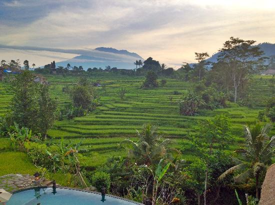Sidemen, Indonesia: Gorgeous