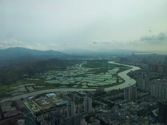 The St. Regis Shenzhen: stunning view
