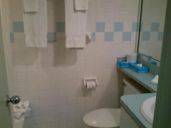 Hotel Chateaubleau: Baño limpio
