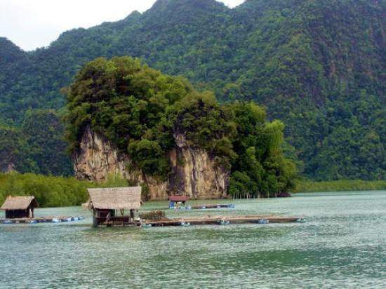 Krabi Kayak照片