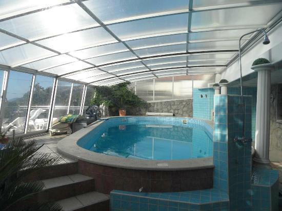 Villa Roses Apartments & Wellness: piscina coperta