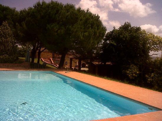 Agriturismo Castello di Selvole: La piscina