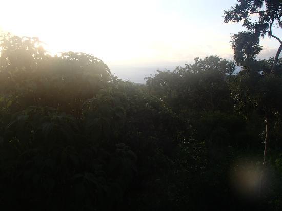 Galapagos Safari Camp: Met uitzicht op de oceaan