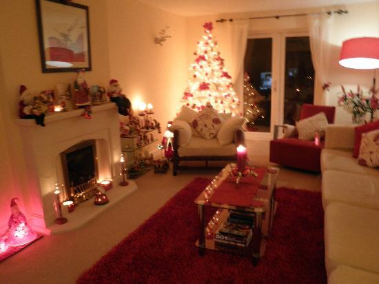 Penny Lodge Bed & Breakfast: Lounge at Christmas