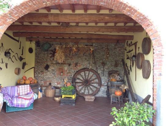 Al Podere di Rosa: l'ingresso dell'agriturismo attraversando la storia agricola del posto !!!