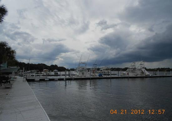Miss Vicki's On the River: THE MARINA