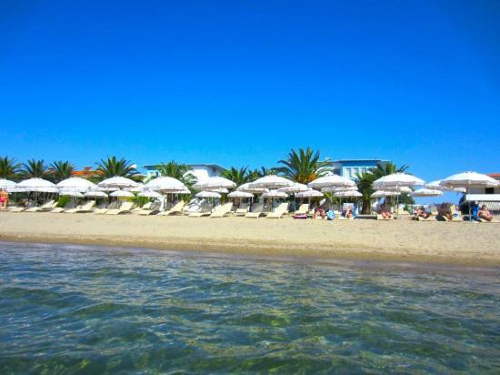 Gerakini, Greece: HOTEL OLYMPION BEACH