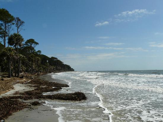 Hunting Island State Park 사진