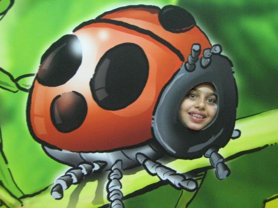 Esapolis - Museo Vivente degli insetti : farsi la foto come insetto e inviarsela via e-mail