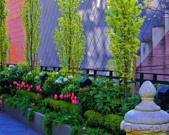 L'Hermitage Hotel: Garden