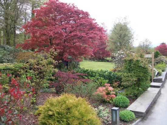 Linthwaite House: Beautiful gardens