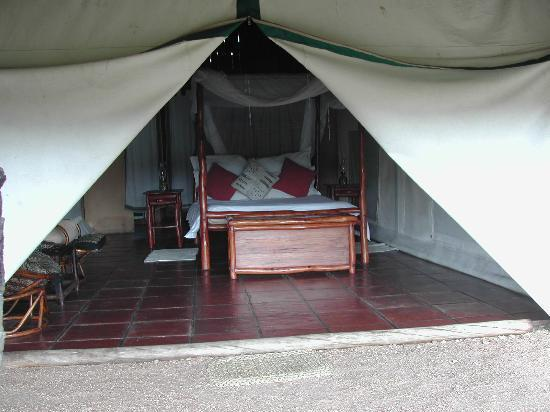 Pungwe Safari Camp: bedroom tent from outside