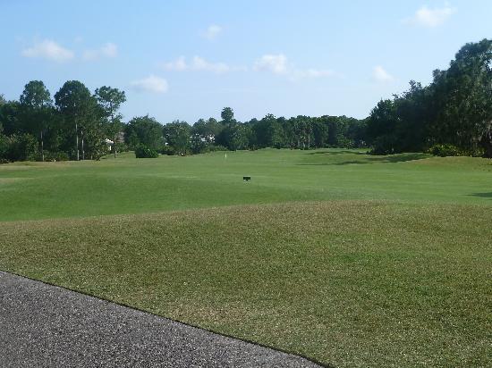 University Park Country Club: University Park Third Nine