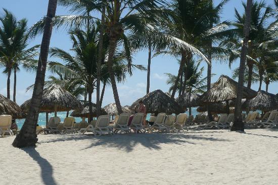 Majestic Colonial Punta Cana: beach at MC