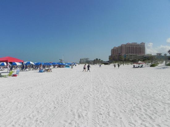‪‪Clearwater Beach‬: beach‬
