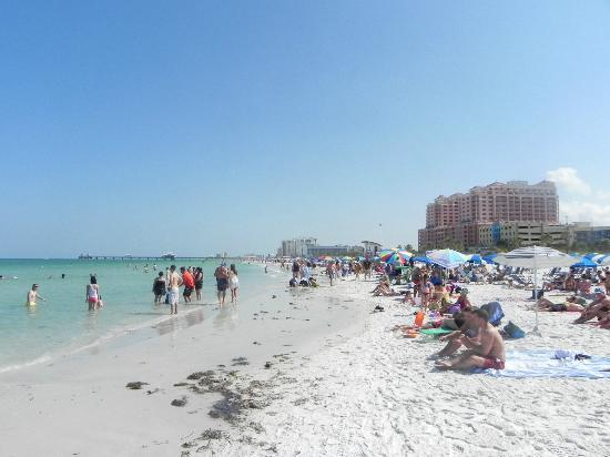 Clearwater Beach: the beach :)