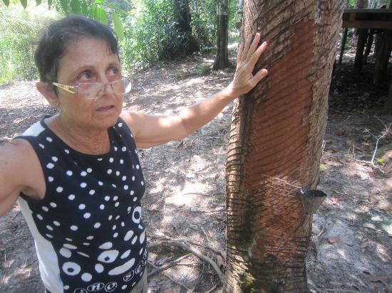Pousada Manaus: Kautschukherstellung hautnah