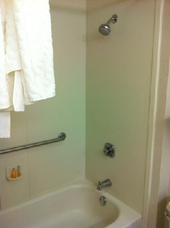 La Quinta Inn & Suites Fort Worth Southwest: the bathroom 1