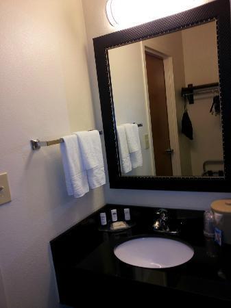 Fairfield Inn & Suites Arlington Near Six Flags: sink area