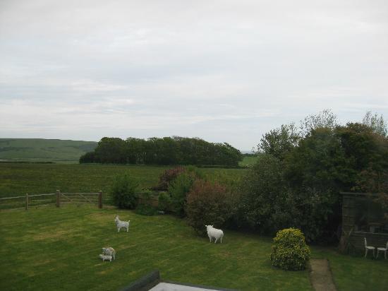 Hill House in Seaford: prachtig uitzicht