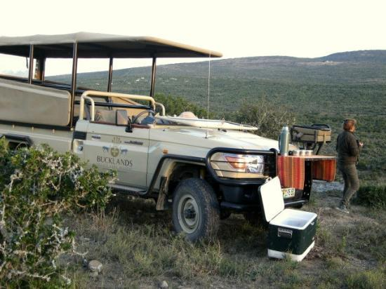 Bucklands Private Game Reserve: Game drive