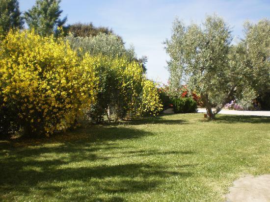 B&B Locanda degli Etruschi: giardino