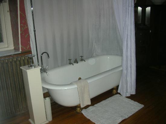 Queen Anne Inn: Shower