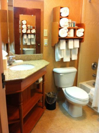 Hampton Inn Winchester: Luxurious bathroom in room where I stayed