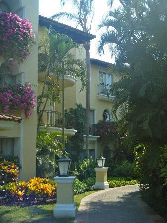 Casa Velas: The beautiful grounds.