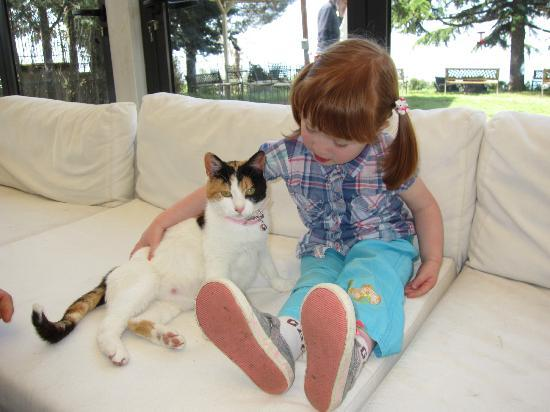 Il Sentiero: Our daughter and the uber friendly 'love cat'.