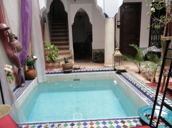 Riad Tamarrakecht: bassin