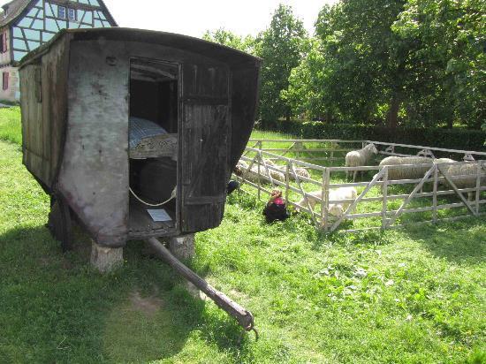 Ungersheim, France: La maison roulante du gardien de moutons