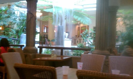 Embassy Suites by Hilton Charlotte: waterfall under breakfast seating