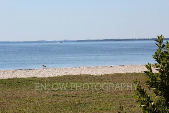Peace River Wildlife Center: Sandy area