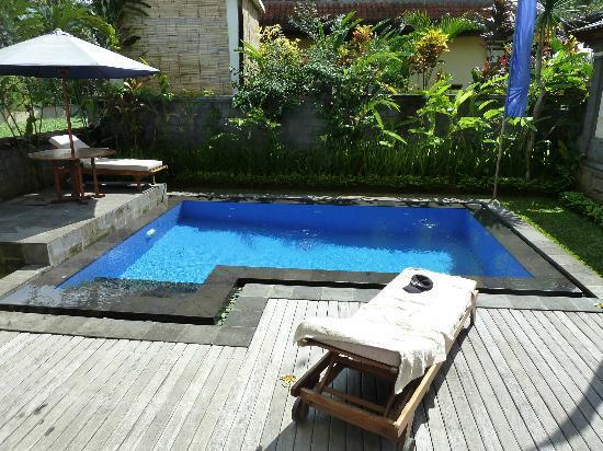 Villa Agung Khalia: Pool at Lotus suite