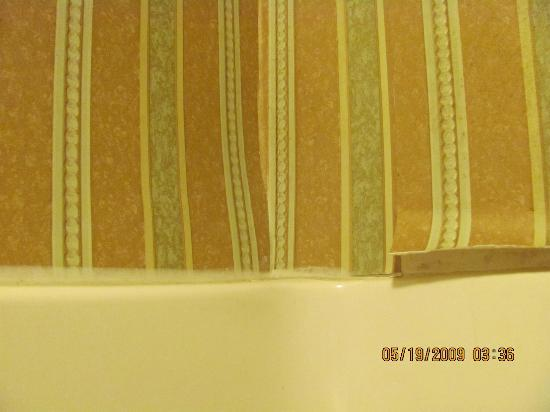 Quality Suites: shower wallpaper peeling