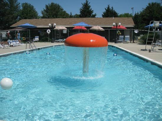 Ramblin Pines Campground: POOL